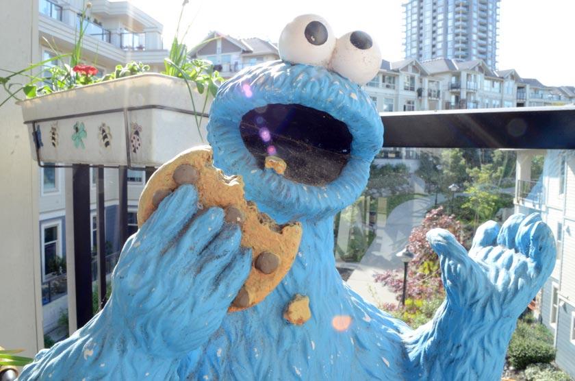 cookie-dirt